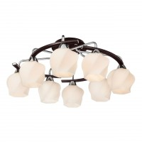 Потолочная люстра Silver Light Aranda 228.59.8