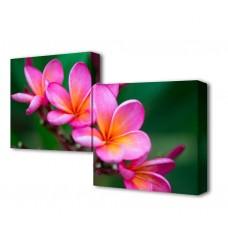 Модульная картина Нежность цветения Toplight 50x100см TL-M2010