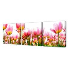 Модульная картина Море тюльпанов Toplight 150х50см TL-M2006