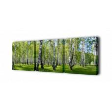 Модульная картина Березы Toplight 150х50см TL-M2003