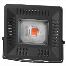 Прожектор светодиодный ЭРА 50W 1370K FITO-50W-LED