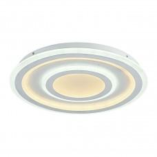 Потолочный светодиодный светильник F-Promo Ledolution 2272-5C